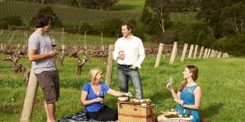Australian Wine Tasting Destinations